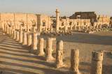 Palmyra apr 2009 0105.jpg