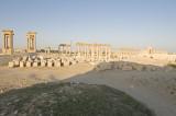 Palmyra apr 2009 0107.jpg