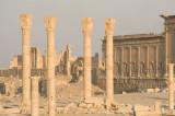 Palmyra apr 2009 0120.jpg