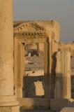 Palmyra apr 2009 0121.jpg