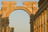 Palmyra apr 2009 0127.jpg