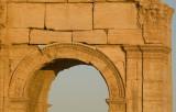 Palmyra apr 2009 0131.jpg