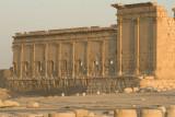 Palmyra apr 2009 0133.jpg