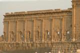 Palmyra apr 2009 0134.jpg