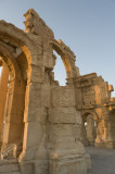 Palmyra apr 2009 0138.jpg