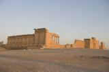 Palmyra apr 2009 0140.jpg