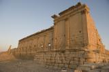 Palmyra apr 2009 0141.jpg