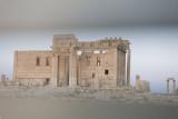 Palmyra apr 2009 0145.jpg