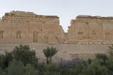 Palmyra apr 2009 0148.jpg