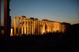 Palmyra apr 2009 0164.jpg