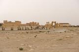 Palmyra apr 2009 0177.jpg