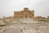 Palmyra apr 2009 0197.jpg