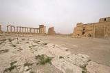 Palmyra apr 2009 0200.jpg