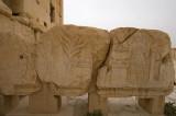 Palmyra apr 2009 0212.jpg