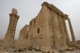 Palmyra apr 2009 0227.jpg