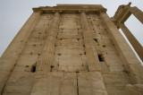 Palmyra apr 2009 0231.jpg
