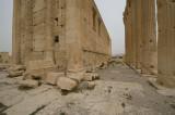 Palmyra apr 2009 0233.jpg