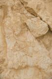 Palmyra apr 2009 0266.jpg