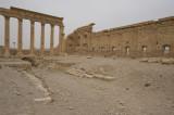 Palmyra apr 2009 0285.jpg