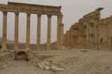 Palmyra apr 2009 0286.jpg