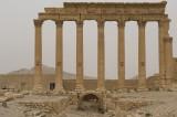 Palmyra apr 2009 0287.jpg