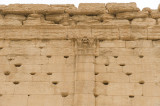 Palmyra apr 2009 0288.jpg