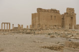 Palmyra apr 2009 0292.jpg
