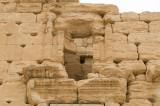 Palmyra apr 2009 0300.jpg