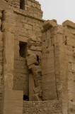 Palmyra apr 2009 0301.jpg