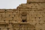 Palmyra apr 2009 0303.jpg