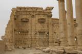 Palmyra apr 2009 0304.jpg