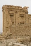 Palmyra apr 2009 0305.jpg