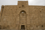 Palmyra apr 2009 0308.jpg