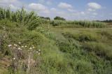 Amrit sept 2009 3397.jpg