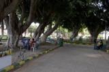 Latakia sept 2009 3854.jpg