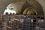 Latakia sept 2009 3871.jpg
