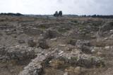 Ugarit sept 2009 3951.jpg