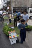 Homs sept 2009 3114.jpg