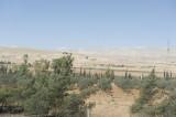 Homs sept 2009 3029.jpg