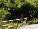 Uno de los puentes