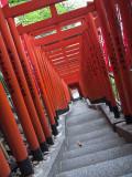 Hie Shrine XI