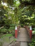 Akasaka Hikawa Shrine IV