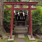 Akasaka Hikawa Shrine VII