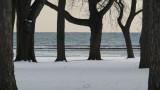 Winter - Toronto