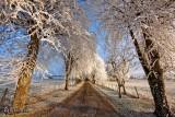 Le chemin de l'hiver...