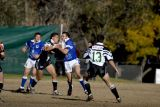 Newtown vs Asquith 30/7/2006