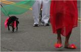 1-San Francisco Carnival 2009
