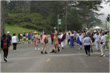 Typical Sunday in the park-Bay to Breakers