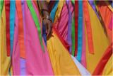 Carnival 2008 #5