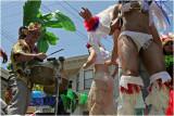 Carnival 2008 #2
